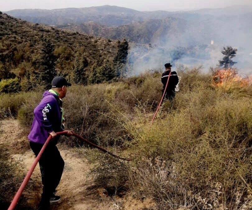 المساندة الميدانية لقيادات المنظمة جنبا إلى جنب مع أعوان الحماية المدنية في عمليات إخماد النيران